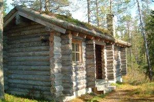 Log saunas